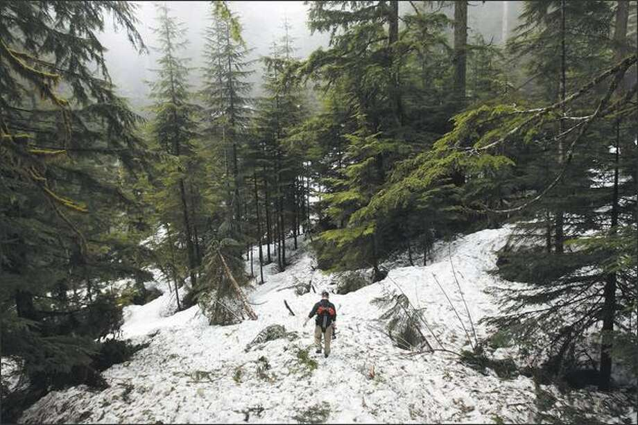 Waterfaller Bryan Swan hikes through the still-ample snowpack near Lake 22. Photo: Andy Rogers, Seattle Post-Intelligencer / Seattle Post-Intelligencer