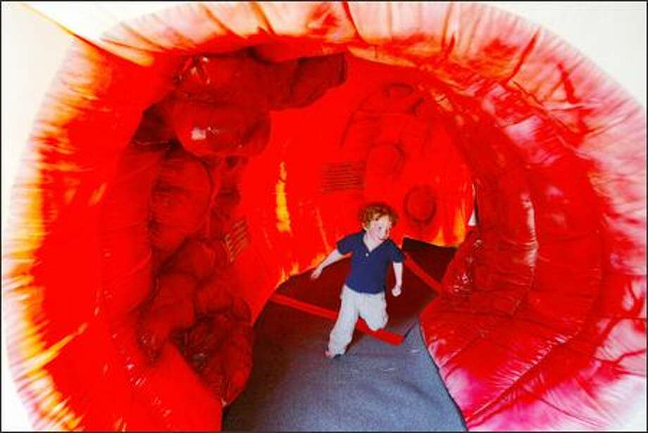 Hugh Gleysteen, 3, of Seattle runs through the 20-foot-long colon exhibit at South Lake Union Park. It is part of a traveling exhibit and illustrates what healthy, diseased and cancerous colon tissue looks like. There's also information on other cancers, and ways to prevent cancer from starting. Photo: Meryl Schenker, Seattle Post-Intelligencer / Seattle Post-Intelligencer