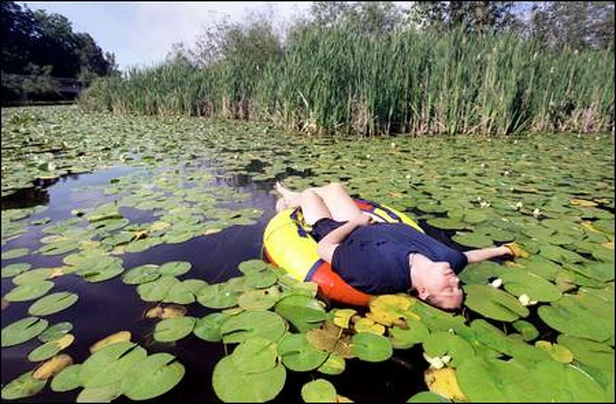 Taking yesterday afternoon off from duties at a hospital, Capitol Hill resident Jo Burillo floats among lily pads at the University of Washington Arboretum near the Evergreen Point Bridge.
