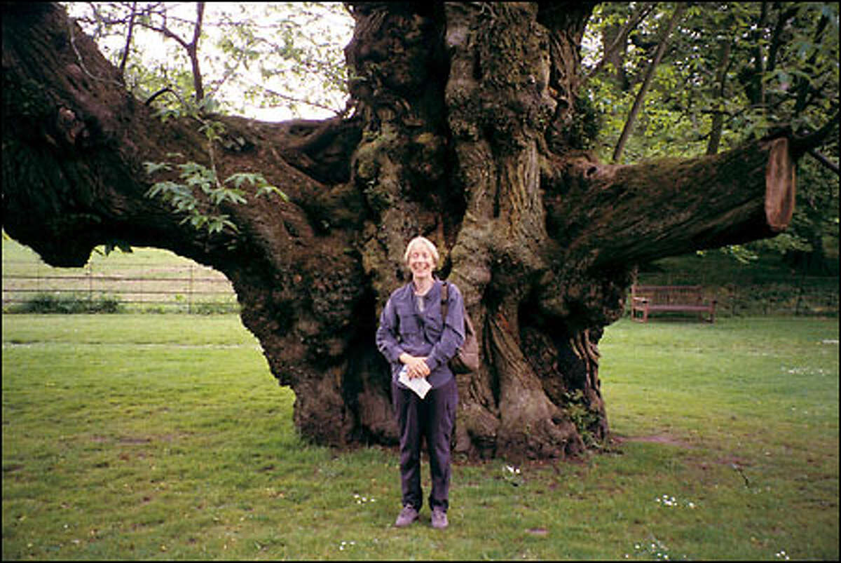 Jane Tobin shows the size of one of the sweet chestnut trees that line a roadway at Stourhead Landscape Garden in Wiltshire. In 1822, these trees were considered old.