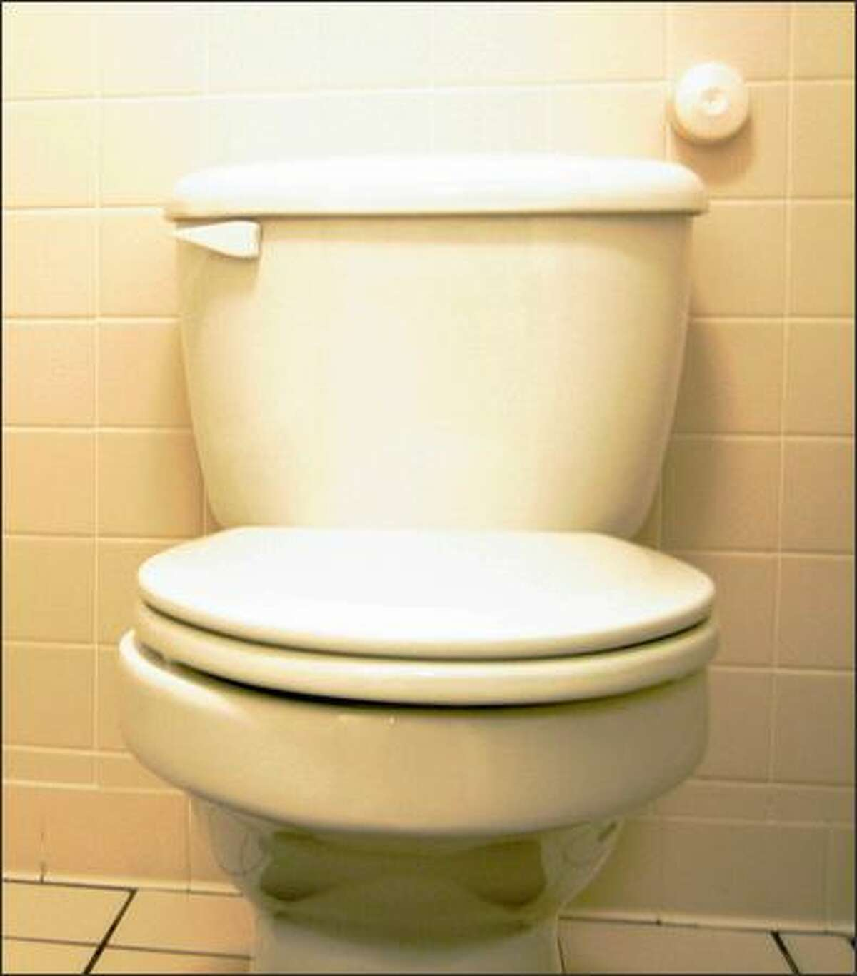 Even old toilets can save water.