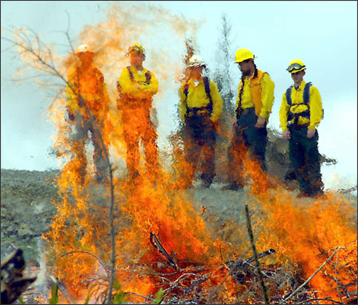 New firefighters and their trainers wait for the flames of a training fire to burn down before moving in to clean it up. Forest Service firefighters mainly train for fires on wild lands, but they are facing more and more blazes at private homes near wooded areas.