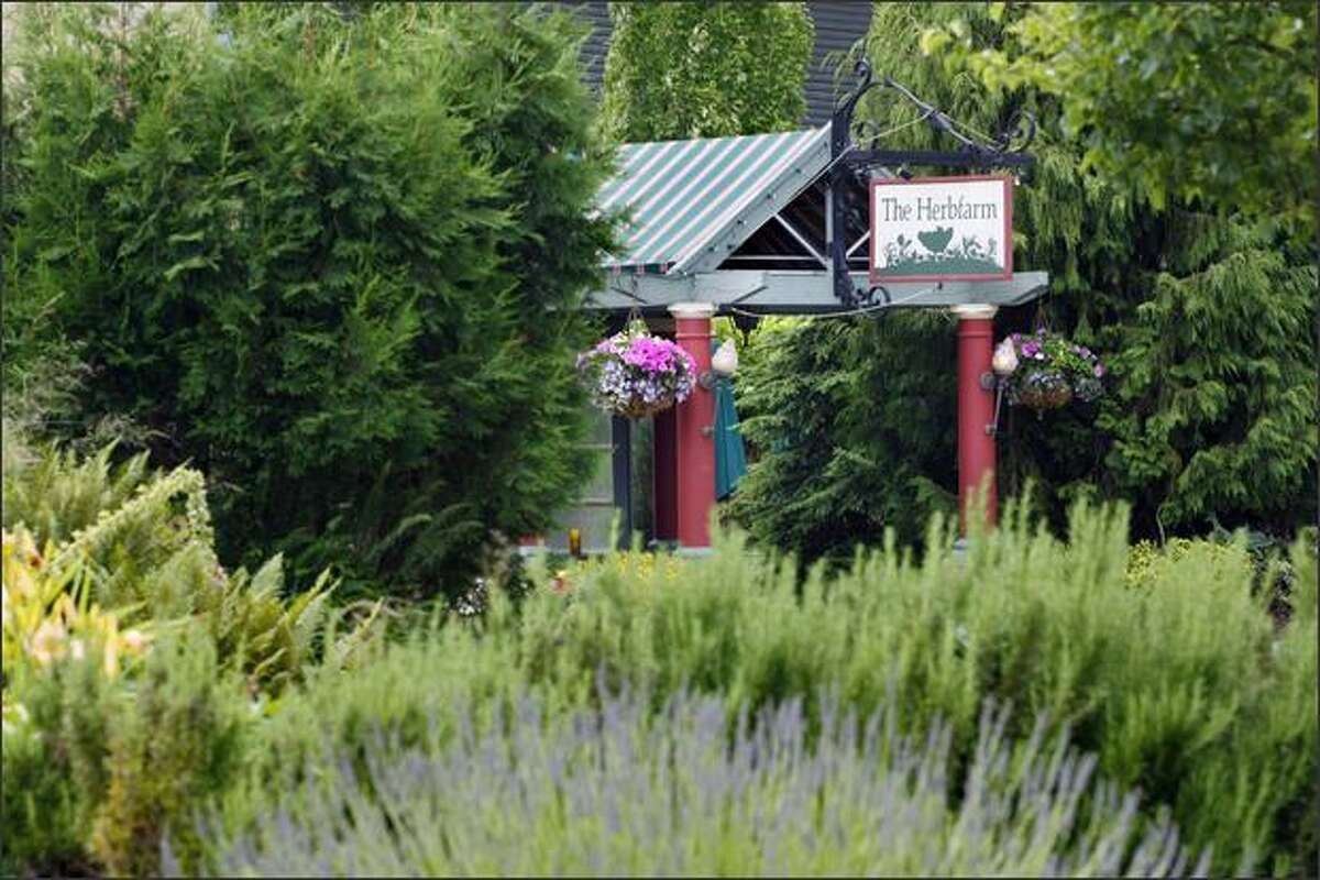 Part of The Herbfarm experience is a walk through the beautiful gardens.