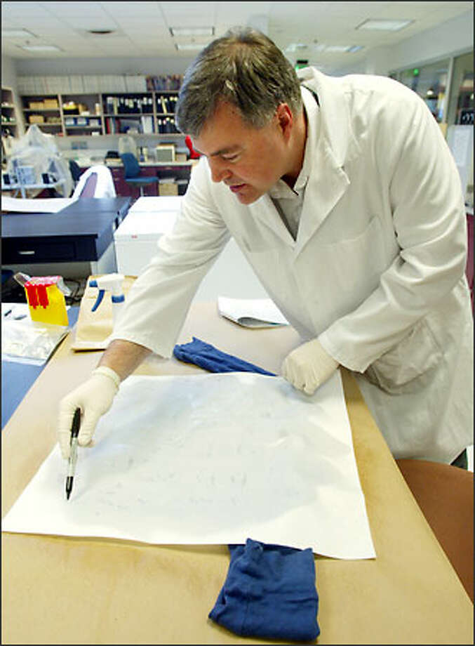 Michael Croteau, supervising forensic scientist at Washington State Patrol's Marysille crime lab, maps a piece of clothing from an alleged rape case for semen on May 7, 2004. He's testing for acid phosphatase, which semen contains high levels of. If AP is found, a DNA test would be performed on relevant portions of the clothing. Photo: Dan DeLong, Seattle Post-Intelligencer / Seattle Post-Intelligencer