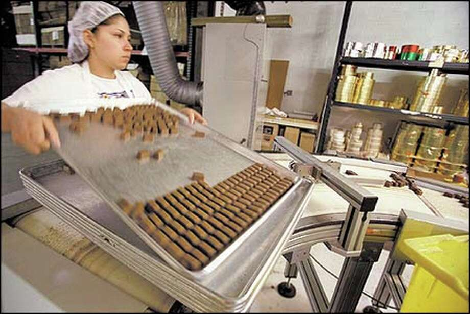 Esteban Munoz gets chocolates ready for wrapping at the new home for Seattle Chocolate Co. in South Park. The treats roll out of the plant at the rate of about 6,000 pounds a day. The earthquake in February badly damaged the company's plant at a critical time, but production is back on its feet now. Photo: Phil H. Webber, Seattle Post-Intelligencer / Seattle Post-Intelligencer