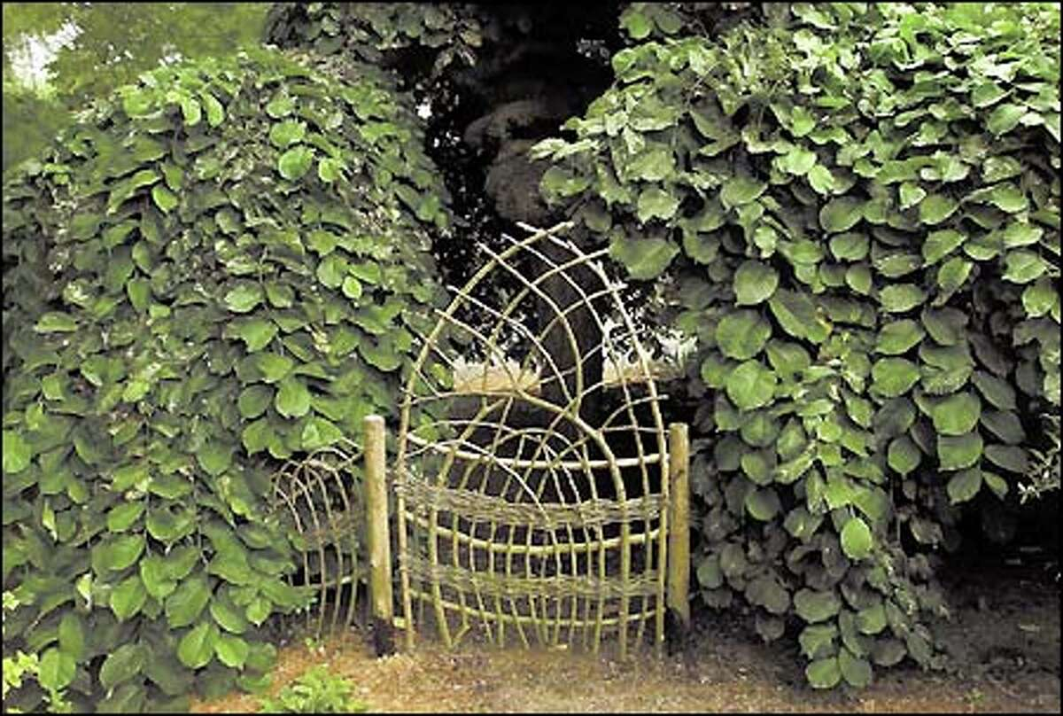 A distinctive gate made from wattle adorns a natural fence built by Sue Skelly at the home of Lee Neff in Seattle.