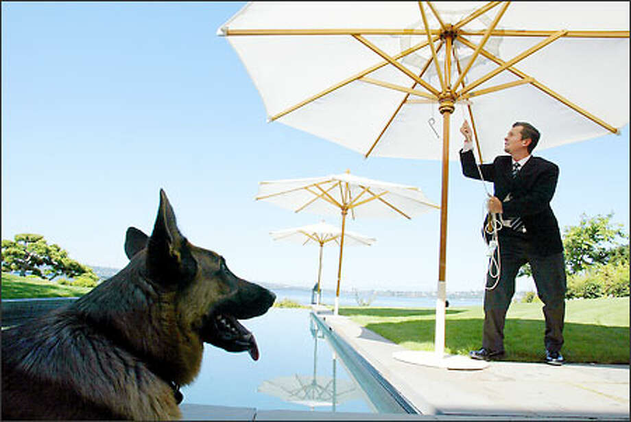 Ringo Allen is the house manager for a family in Medina, which means he does it all at their mansion, including putting up umbrellas by the pool and tending to their German shepherd. Photo: Paul Joseph Brown, Seattle Post-Intelligencer / Seattle Post-Intelligencer