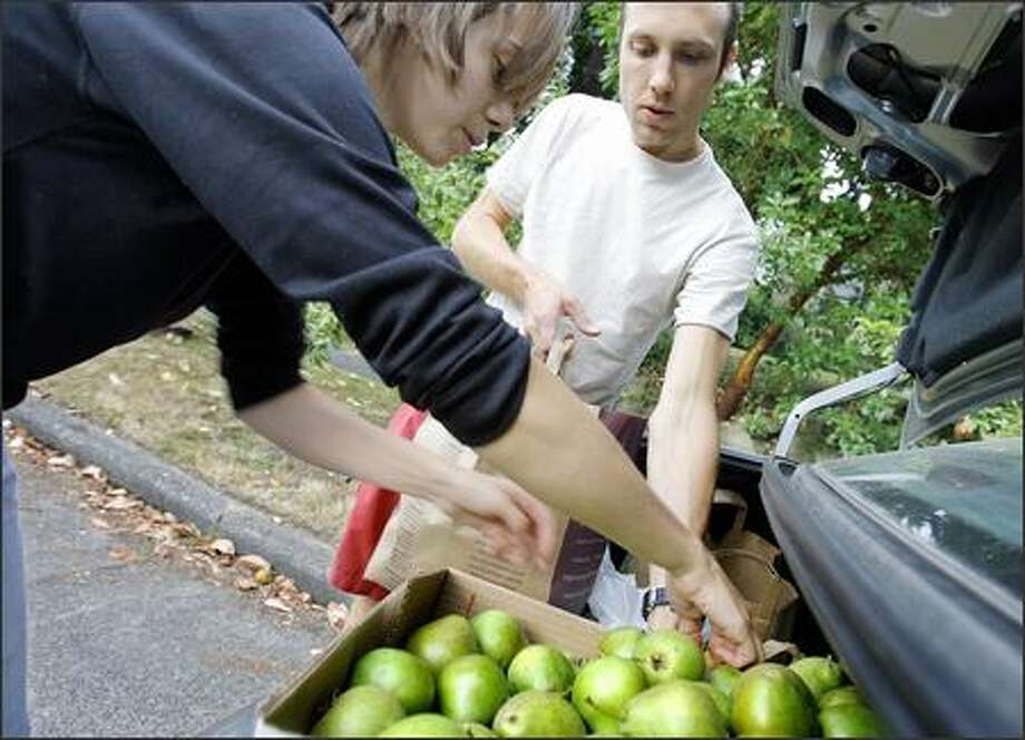 Volunteer picker Ashley Fent, left, loads pears into the trunk of fellow volunteer Mike Dussault's car at the home of Doug Plummer in Seattle. Fent and Dussault work with Community Fruit Tree Harvest, which picks residents' fruit for free and takes it to area food banks. Photo: Gilbert W. Arias, Seattle Post-Intelligencer / Seattle Post-Intelligencer
