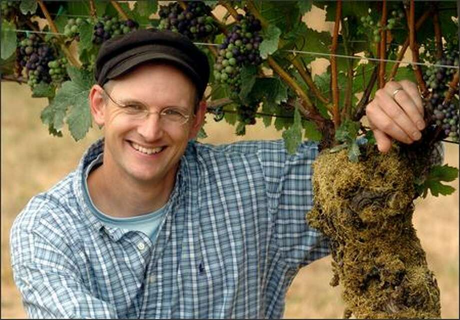 "Jason Lett with ""Old Number One,"" the first pinot noir grapevine planted by his father in 1966, in what was a plum orchard and is now part of the Eyrie vineyards in Dayton, Ore. Photo: Associated Press / Associated Press"