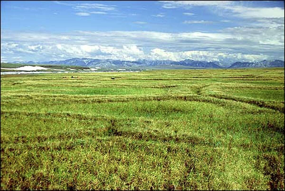 The grand, transcendental landforms of the northeast corner of Alaska are
