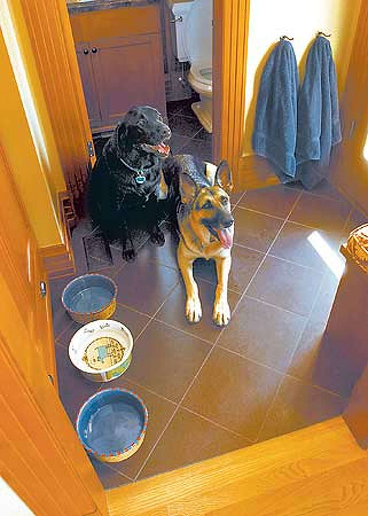 A slate entryway lets owners clean wet paw prints left by Zeke and Jake with the swipe of a sponge. (