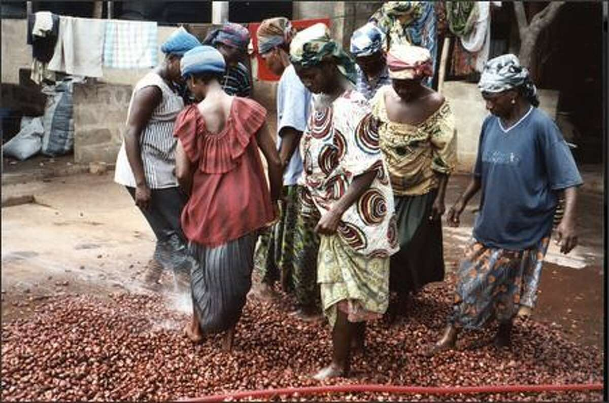 Well-paid co-op workers in Togo, who also get medical benefits, hose off fresh shea nuts and walk on them to knock off dust and debris.