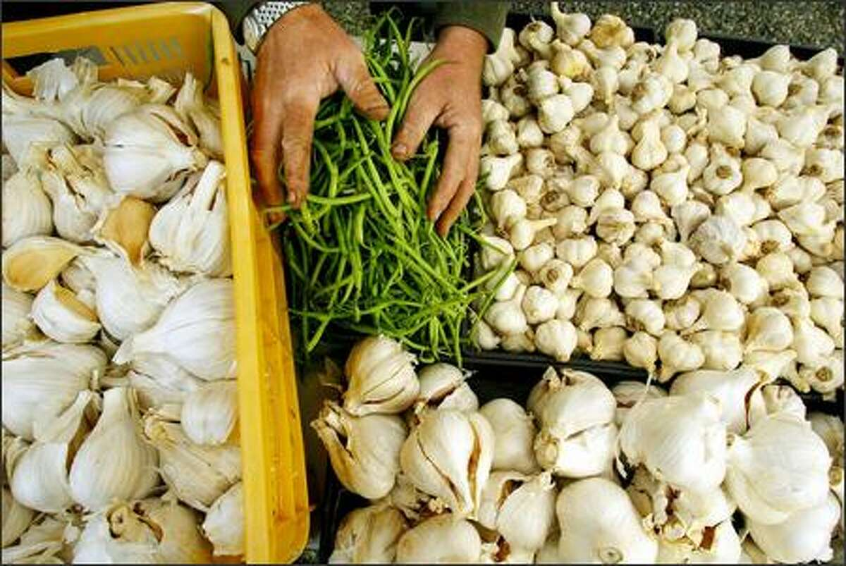 Bennett's assortment includes elephant garlic, haricots verts and more garlic varieties. He tailors his selection to the markets where he sells his produce: Columbia City, West Seattle, Burien and Federal Way.