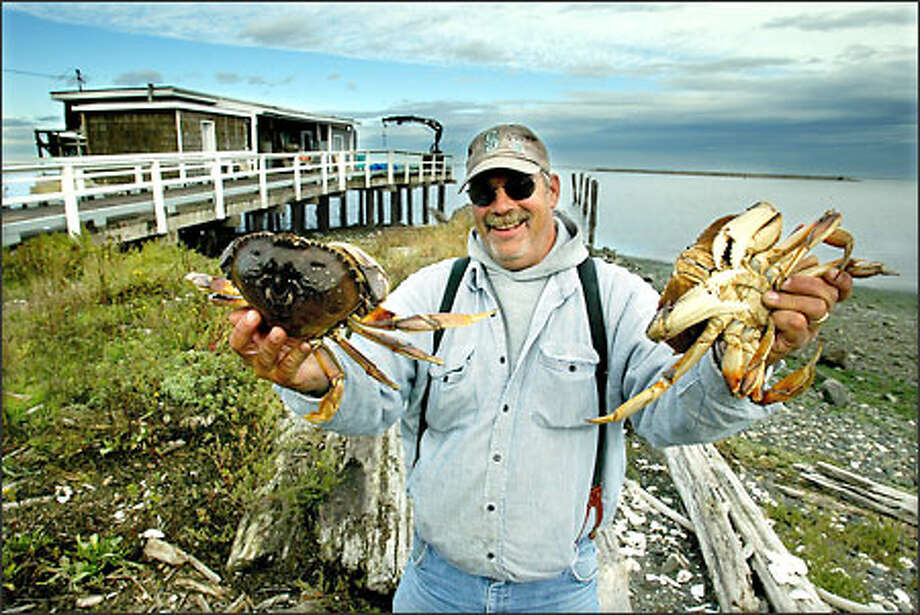 Dan Schleve shows off a pair of Dungeness crabs fresh from the Strait of Juan De Fuca near Sequim. The crab gets its name from nearby Dungeness Spit. Photo: Paul Joseph Brown, Seattle Post-Intelligencer / Seattle Post-Intelligencer