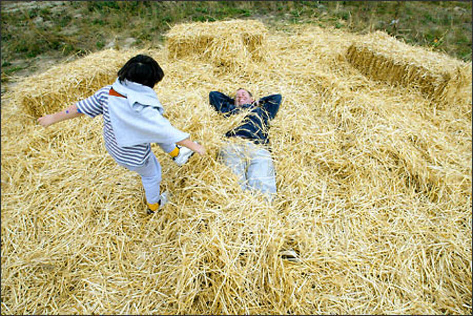Jeffrey Baxter, 5, kicks hay over dad Mike Baxter at the Seattle Art Museum's Halloween Extravaganza, held yesterday at the future site of the Olympic Sculpture Park on Elliott Avenue. Children got to see pumpkin carving and puppet shows, listen to music, and get pony rides and Halloween treats. Photo: Mike Urban, Seattle Post-Intelligencer / Seattle Post-Intelligencer