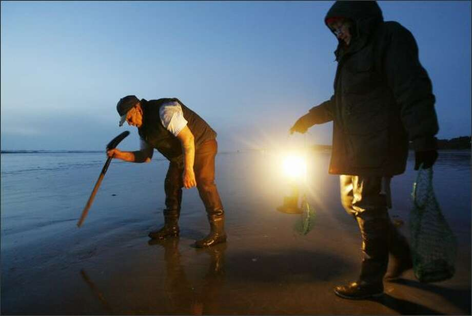 "Ruth Ashe holds the lantern so Ron Wilson can spot a razor clam's ""show"" in the sand. Photo: Dan DeLong, Seattle Post-Intelligencer / Seattle Post-Intelligencer"