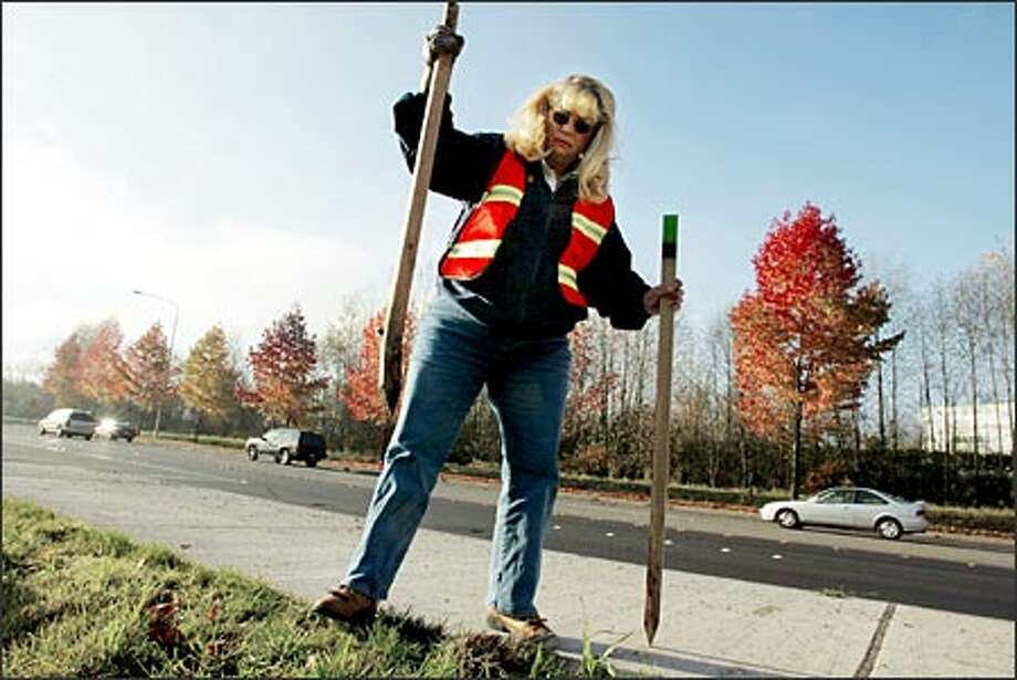 Michele Forkner, a city of Issaquah code-compliance officer, each Monday patrols for illegal signs and placards. Sometimes the parties who place the signs remove them later but leave the stakes. Photo: Paul Joseph Brown, Seattle Post-Intelligencer / Seattle Post-Intelligencer