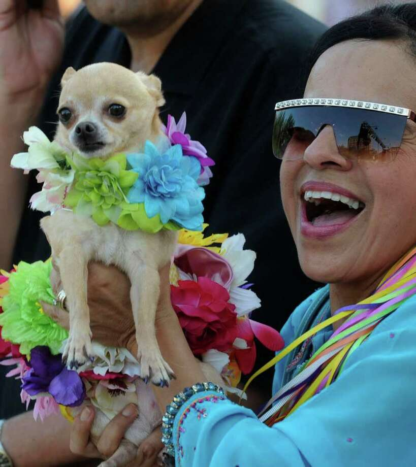 Coco and her owner, Thelma Rodriguez, enjoy the afternoon as Fiesta San Antonio 2011 opens in Alamo Plaza on April 7. Photo: BILLY CALZADA / gcalzada@express-news.net