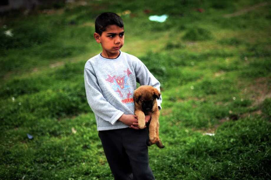 A Roma boy carries his dog during a celebration of International Roma Day in the Stolipinovo suburb of Plovdiv on April 8, 2011. Romania's Roma community is the biggest in Europe. Bulgaria has an estimated 700,000 Roma, or about 10 percent of the population, most of whom live in abject poverty. Photo: AFP/Getty Images