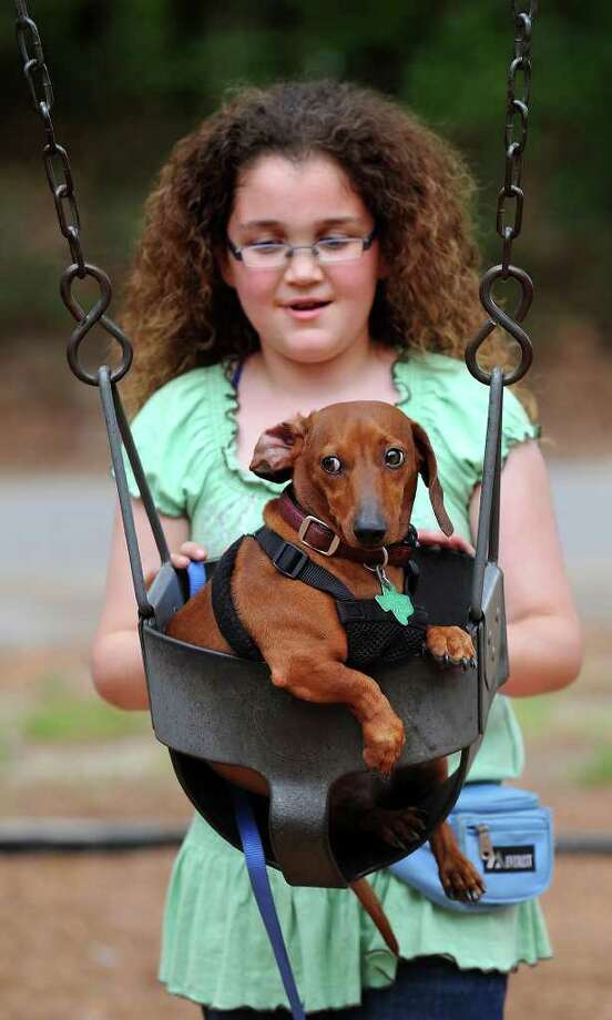 Oscar, a two-year-old dachshund, holds tight while JoAnna Thigpen, 9, pushes him in a swing at Grace Dunne Richardson Park Saturday, April 2, 2011, in Lufkin, Texas. Photo: AP
