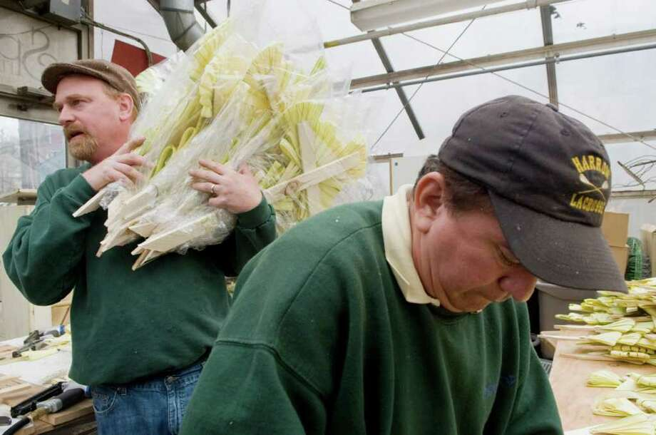 Tom Doyle and Julio Sequeira make palm crosses at Springdale Florist in Stamford, Conn. on Friday April 8, 2011. Photo: Kathleen O'Rourke / Stamford Advocate