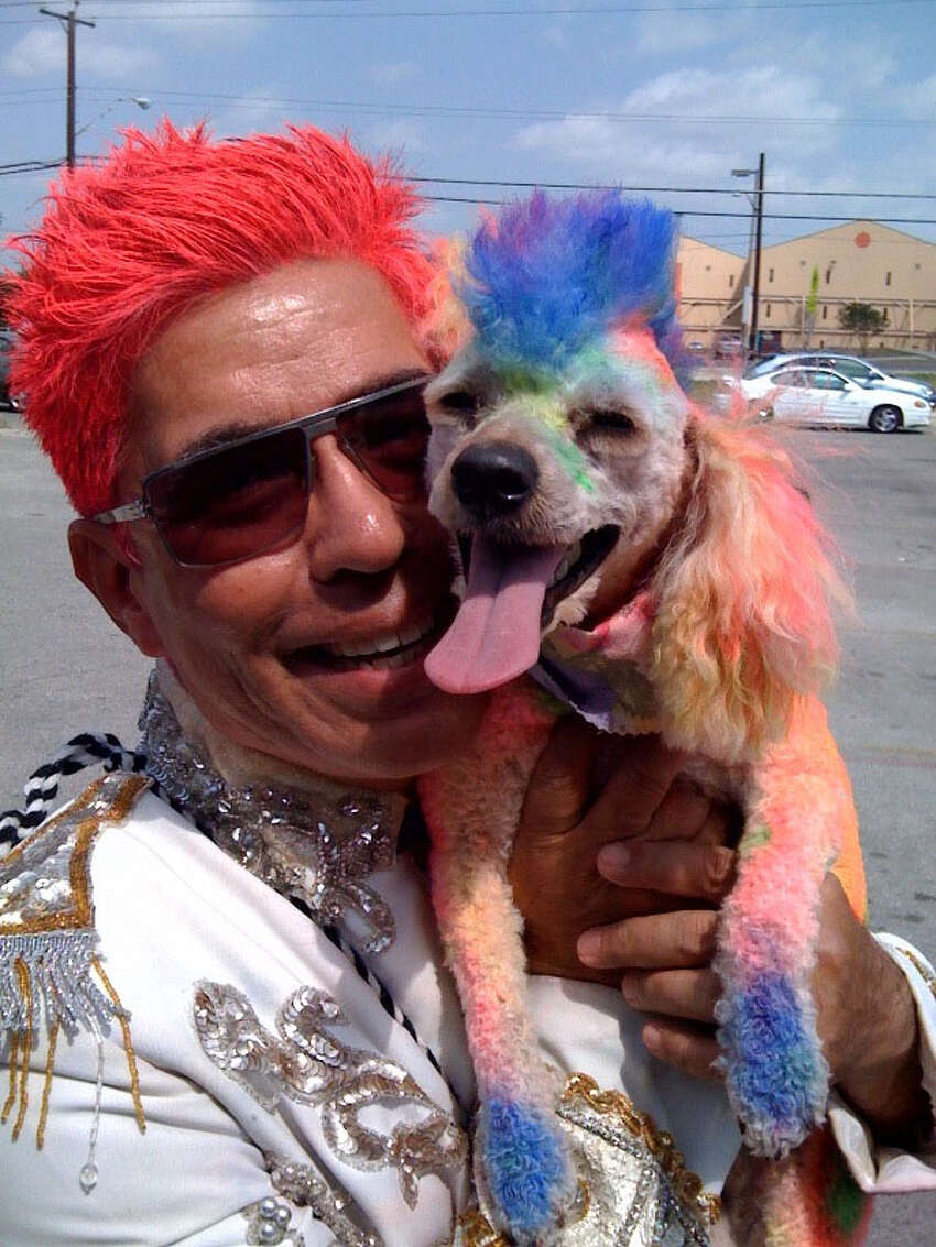 Show us Your Hair/Michael's Fiesta Follicles/Day 3: Real men wear hot pink and carry a poodle with a mohawk