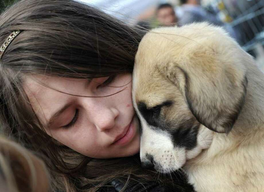 A Romanian girl holds a puppy during a protest in front of the Romanian parliament building in Bucharest on April 9, 2011 against a law on euthanizing stray dogs. Photo: AFP/Getty Images