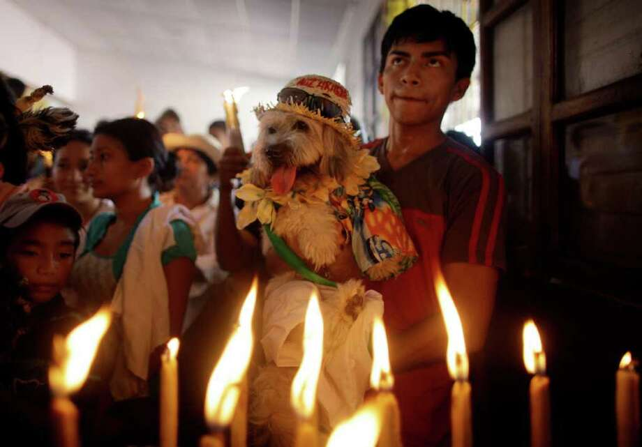 A youth holds up a dog wearing a costume to be blessed during Saint Lazarus celebrations at Maria Magdalena Catholic church in the indigenous neighborhood of Monimbo in Masaya, Nicaragua, Sunday April 10, 2011. The blessing of the animals is an annual event. Photo: AP