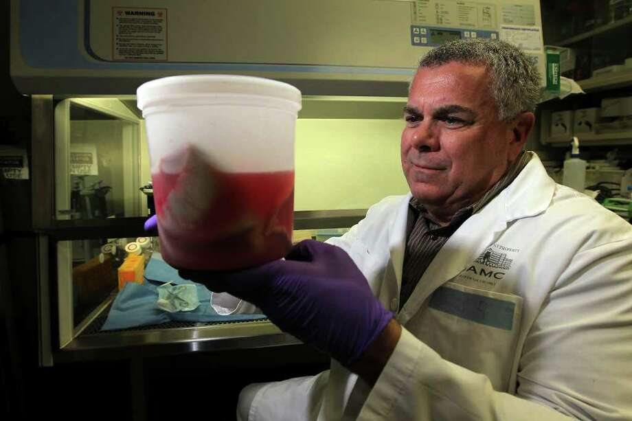 Robert J. Christy, PhD. with Extremity Trauma Research and Regenerative Medicine at the U.S. Army Institute of Surgical Research is developing a process for creating new skin from fat cells harvested from burned or damaged skin. Though the process may be a few years away, wounded soldiers with burn wounds could effectively be healed by their own cells. Christy holds a container of grafted, burned skin in which the fatty tissues will be harvested to generate new skin. Kin Man Hui/kmhui@express-news.net Photo: KIN MAN HUI, Kin Man Hui/Express-News / San Antonio Express-News