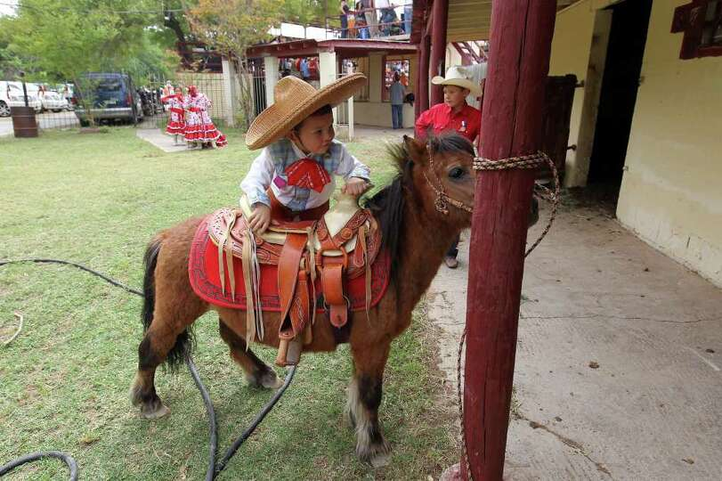 Young charro Aiden Servantez, 4, attempts to mount his miniature horse in front of the stables durin