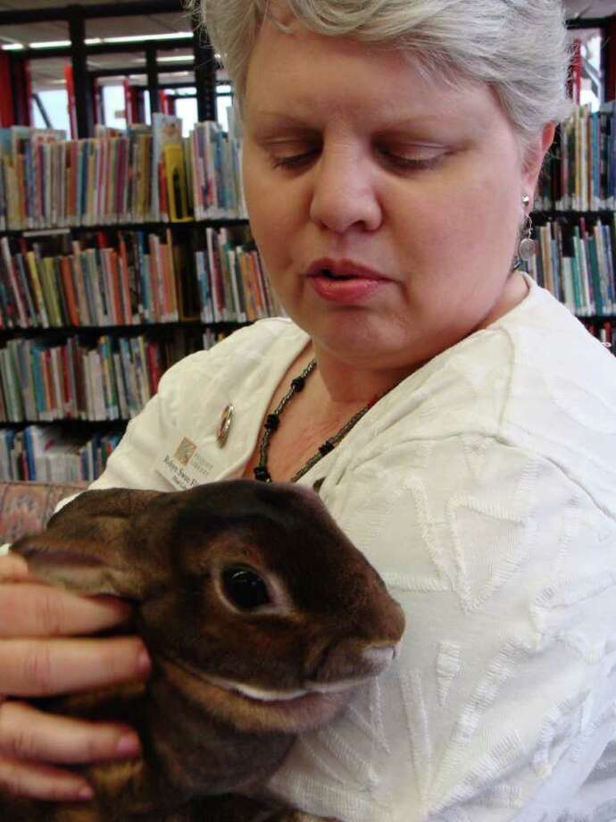 "Belle, the resident bunny at the Pequot Library, will be the ""host"" of Saturday's annual  Easter egg roll at the library. Here, Belle cuddles with Robyn Swan Filippone, the Pequot's head librarian. Photo: Meg Barone / Fairfield Citizen freelance"