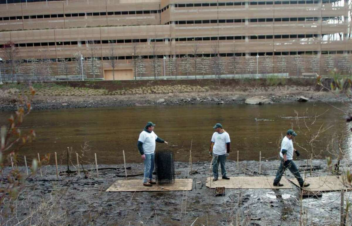 Employees from Eastern Land Management build a protective fence along the Mill River to keep the geese out of the salt marsh restoration area in Stamford, Conn. on Friday April 22, 2011.