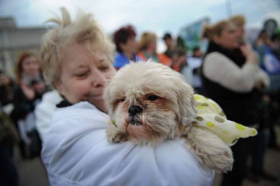 A woman holds her dog as she demonstrates in front of the Romanian parliament building in Bucharest on April 18, 2011, to protest against a law to restart the killing of stray canines. Photo: AFP/Getty Images