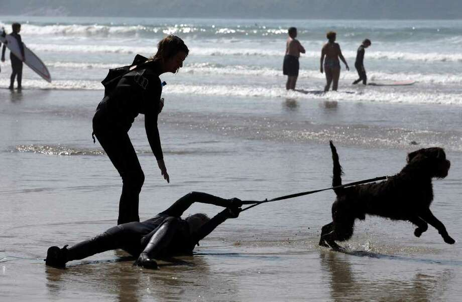 A dog tries to escape its lease and run into the sea as visitors enjoy the fine weather in Polzeath near Padstow on April 21, 2011 in Cornwall, England. Photo: Getty Images