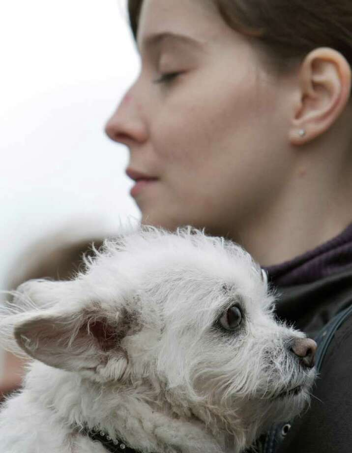 Max, a rescued dog, is held by owner Ilinca Gherghina  during a protest against the euthanasia of stray dogs in Bucharest, Romania, Monday, April 18, 2011.  Photo: Vadim Ghirda, ASSOCIATED PRESS / AP2011