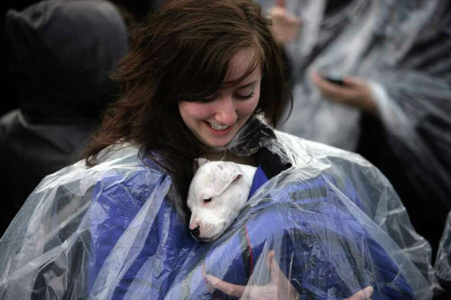Emily Ioban,18, of Northville, Mich., tries to keep her dog Ramona dry before the Detroit Prayer Walk, Saturday, April 16, 2011. At least 10,000 people turned out Saturday for the round-trip trek along Woodward Avenue from Comerica Park to the Spirit of Detroit statue. Photo: AP