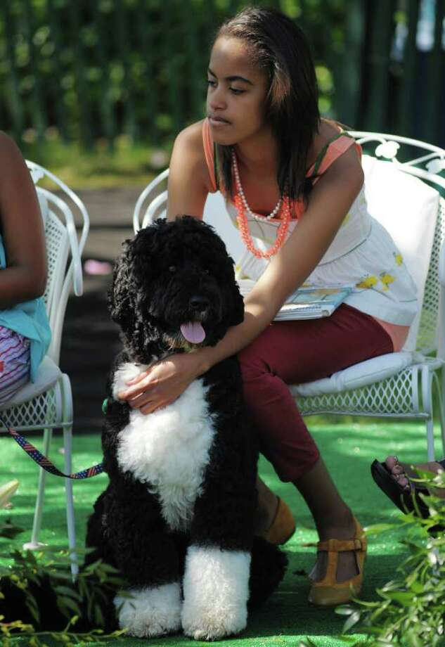 Malia, daughter of US President Barack Obama and First Lady Michelle Obama, sits with Bo, the family dog, while her parents read book to children during the annual Easter egg roll on the South Lawn of the White House in Washington, DC.  Photo: AFP/Getty Images