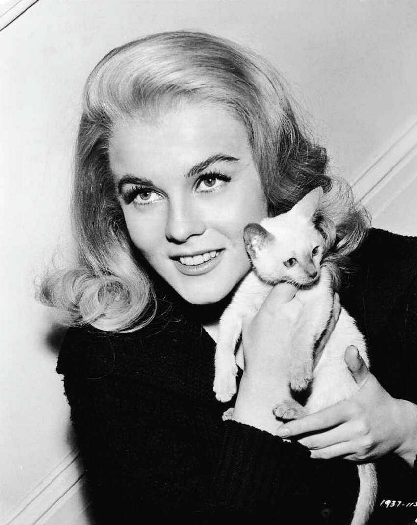 Promotional portrait of Swedish born actor Ann-Margret holding a Siamese kitten for the film, 'Kitten With a Whip,' 1964.