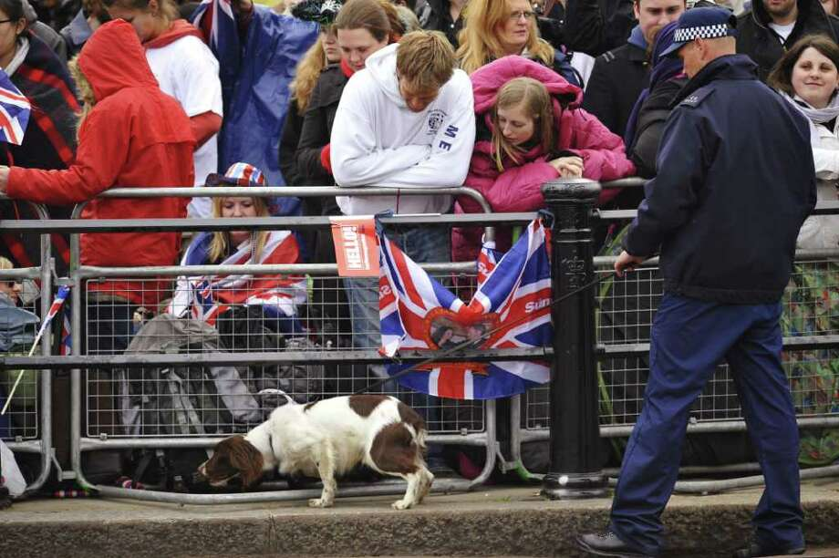 Well wishers watch a police sniffer dog in action as they gather along the processional route on the day of the Royal Wedding of Prince William, Duke of Cambridge and Catherine, Duchess of Cambridge, on April 29, 2011 in London, England. Photo: Getty Images