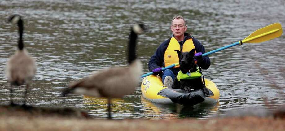Ernie Gilpin, of Bend, Ore., and his dog Flame, a 6-year-old Austrialian Kelpie, are shown near some geese at Drake Park in Bend, Ore. Gilpin has signed up to volunteer with the Bend Park & Recreation District to haze geese as a way to keep them from settling in areas like Drake Park. Herding geese comes naturally to Flame, Gilpin said. Photo: AP