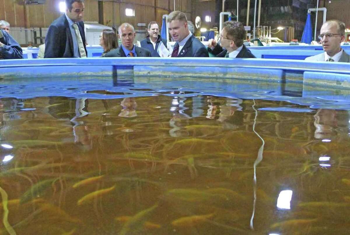 Congressman Chris Gibsons,center, tours the Local Ocean fishery in Greenport, NY Friday April 29, 2011. During a press conference National Grid announced a $250,000 economic developement grant for expansion of the facility.( Michael P. Farrell/Times Union )