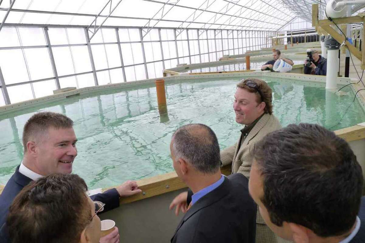 Congressman Chris Gibsons,left, tours the Local Ocean fishery in Greenport, NY Friday April 29, 2011. During a press conference National Grid announced a $250,000 economic developement grant for expansion of the facility.( Michael P. Farrell/Times Union )