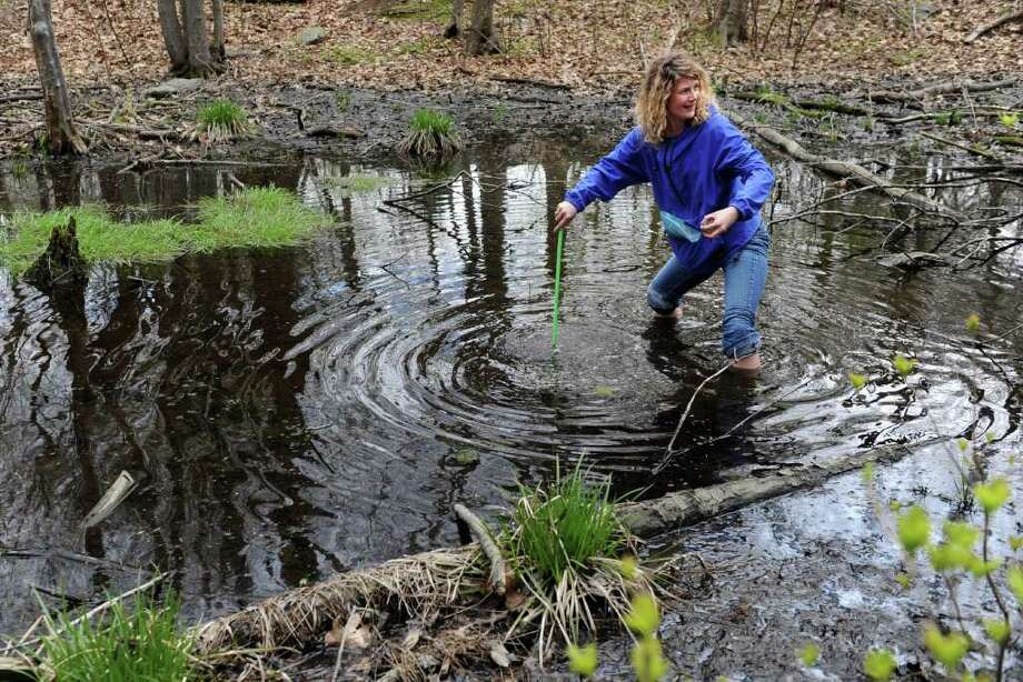 ANSONIAAlison Rubelmann leads a nature walk from 8 a.m. to noon Saturday June 7 from the Ansonia Nature and Recreation Center along the Raptor Woods Trail. Click here for more info. Photo: Autumn Driscoll / Connecticut Post