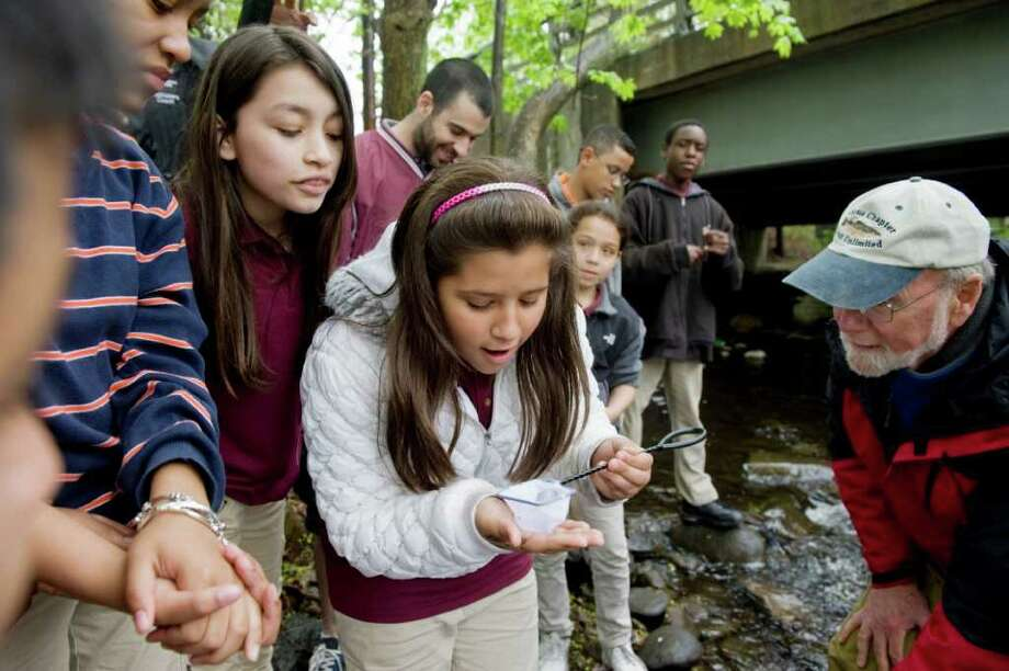 Analiette Rodriguez, 11, holds a net full of fish as students from Domus release a barrel of trout into the Rippowam River in Stamford, Conn. on Wednesday May 4, 2011. The students raised hundereds of trout from eggs during a cross-curricular experiment. Photo: Kathleen O'Rourke / Stamford Advocate
