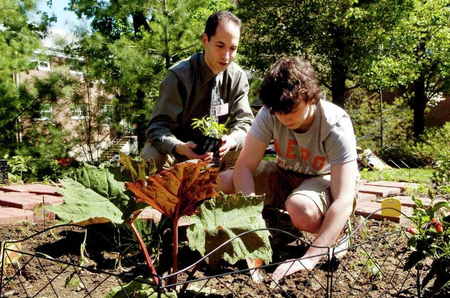 Dr.Marc Brodsky, medical director of Stamford Hospital's Center for Integrative Medicine and Wellness, helps Stamford High School sophmore Kyle Gioielli plant at the medicinal herb and aroma garden at the Hospital's Tully Health Center in Stamford, Conn. on Monday May 9, 2011. Photo: Dru Nadler / Stamford Advocate Freelance