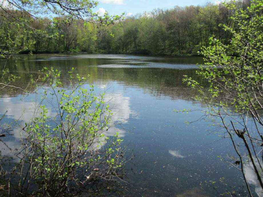 The Perry's Mill Ponds Open Space offers hikers, kayakers and fishermen a slice of wilderness without leaving the Fairfield town boundaries. Photo: Photo Courtesy Of Ron Blumfeld, Contributed Photo / Fairfield Citizen contributed