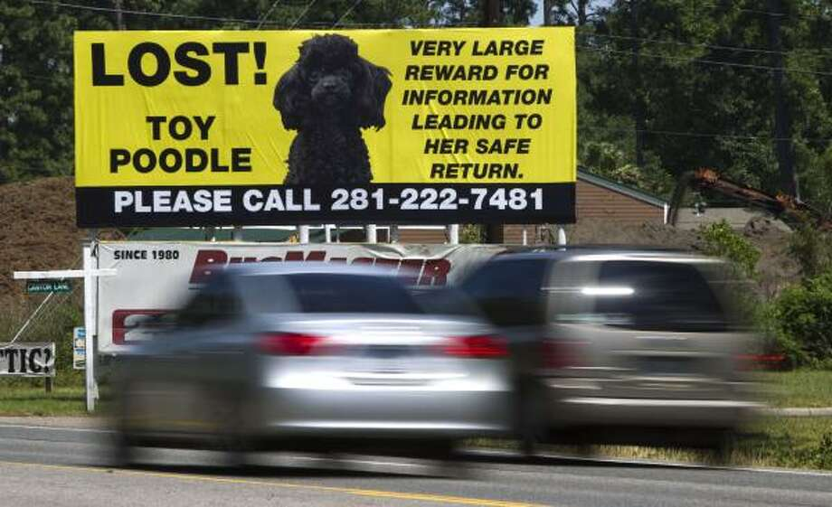 A billboard seeking the recovery of a lost poodle stands in the 4400 block of FM1960 East on May 13 in Humble. Brett Coomer/Houston Chronicle Photo: Brett Coomer, Houston Chronicle
