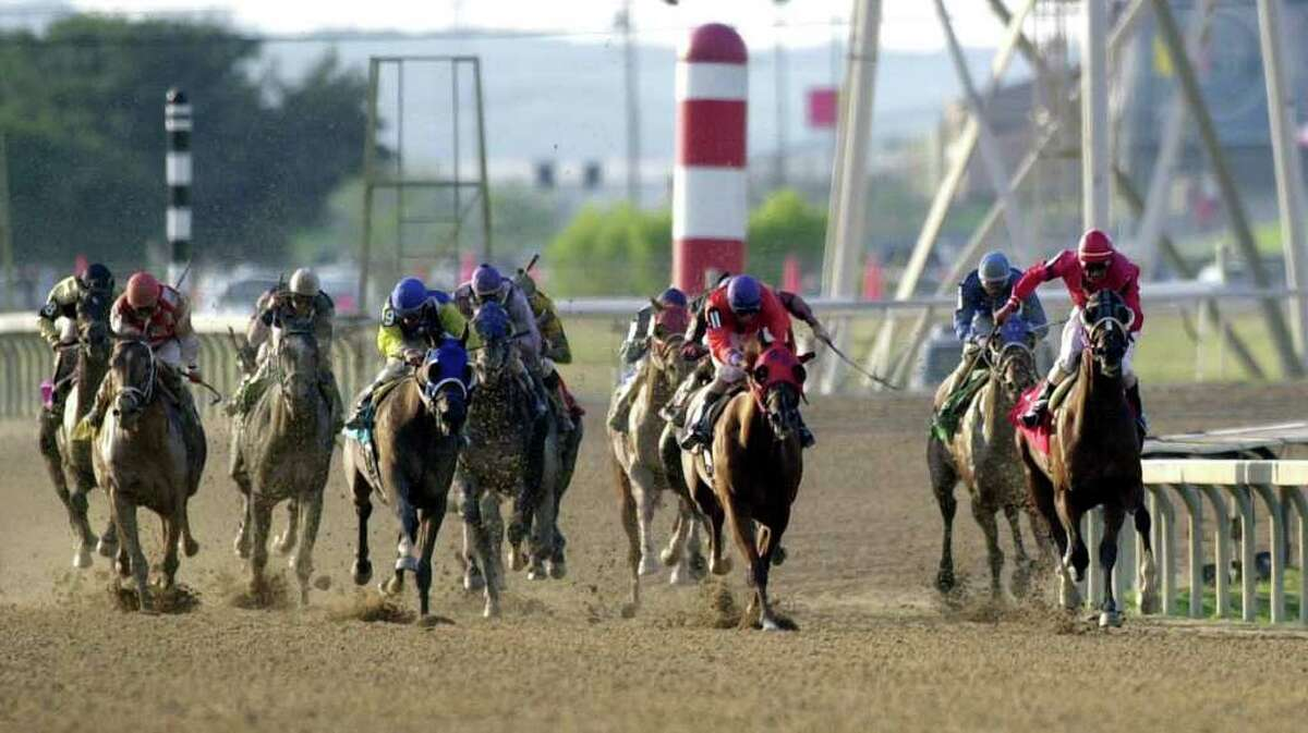 Thoroughbreds, led by Cien Memories, jokeyed by Jesus Rodriguez (far right) make their way down the stretch in a race at Retama Park.