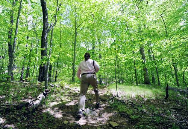 "Jeff Cordulack, communications for Audubon Greenwich, hikes to the site at Audubon Greenwich where the person known as ""The Leatherman,"" a wandering hobo dressed in a leather outfit, was reported to have stayed when walking through Greenwich during the early 1860s through the late 1880s, Tuesday afternoon, May 10, 2011. Photo: Bob Luckey / Greenwich Time"
