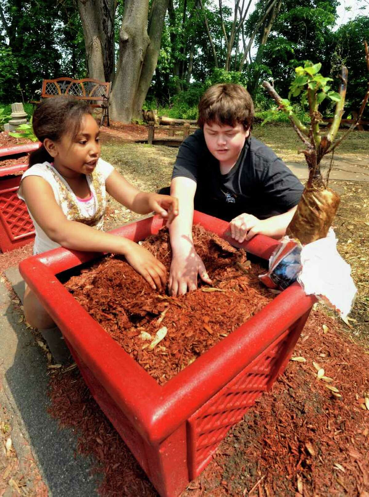 Esperanza Hernandez, 8, and Ranier Bassett, 12, work on a planter in the park and community garden that students of Education Connection Access Gertrude Fielding Learning Center have created. They cleaned up what had been a dumping ground behind the Danbury School. Photographed Thursday, May 26, 2011.